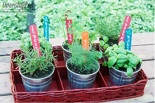 Patio Herb Garden Overstuffed Life, Herb Garden Patio