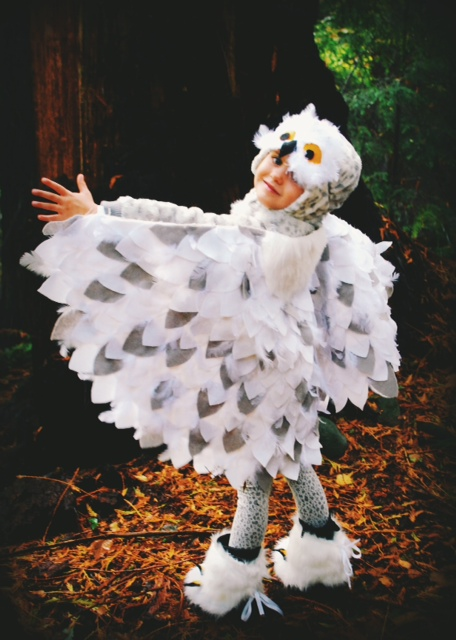 No sew snowy owl costume