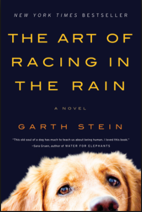 book review—The Art of Racing in the Rain by Garth Stein